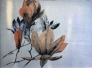 Floating Magnolia Lito Tresnitt 86x64cm