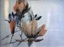 Gro Mukta Holter - Floating Magnolia Lito Tresnitt 86x64cm