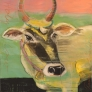 Holy Cow 60 x 60 cm
