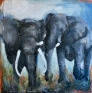 Elephants 120 x 120 cm