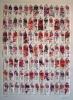 Tubes rouges Ed 125 70x100cm