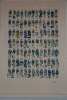 Tubes bleues Ed 125 70x100cm